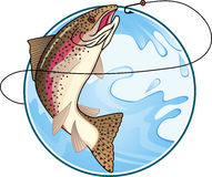 Trout fishing Royalty Free Stock Photo