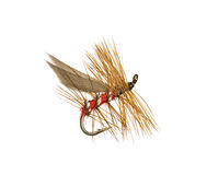Fly Fishing Lure. Dry Trout Fishing Fly Isolated on White Background Royalty Free Stock Photos