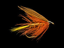 Trout Fishing Fly. Orange Wet Trout Fishing Fly Isolated on Black Background Royalty Free Stock Images