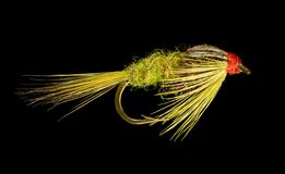 Trout Fishing Fly Stock Photo