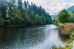 Trout fishing lake Royalty Free Stock Photo
