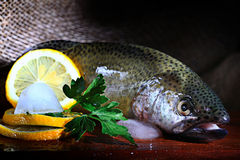Trout fresh greens ice restaurant Stock Images