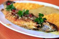 Trout fried with banusz and mushroom soup. Tasty dish royalty free stock images
