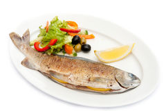 Trout. Fried trout with vegetables on a white plate stock photography