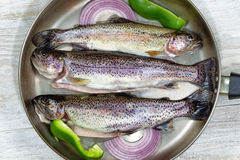Trout in Fry Pan Stock Photos