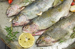Trout on a frying pan Royalty Free Stock Photos