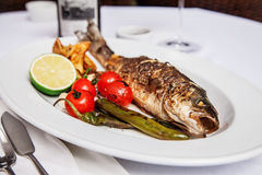 Trout grill with tomatoes,peppers,lemon and fried potatoes Stock Photography