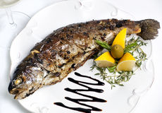 Trout grilled on a plate with lemon Stock Photo