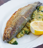 Trout on Potato Stock Photography