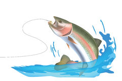 Trout hook Royalty Free Stock Photography