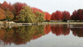 Trout Lake Autumn Colors, Vancouver. Trout Lake, in John Hendry Park, is a favorite spot in the heart of the city. Vancouver, British Columbia, Canada stock footage