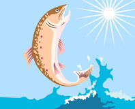Trout leaping out of water. Vector art of a trout leaping out of water Royalty Free Stock Image