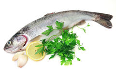 Trout with lemon. A view of trout with lemon royalty free stock image