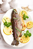 Trout with lemons and rosemary for Christmas Royalty Free Stock Images