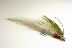 Trout lure for fly fishing. Hand tied minnow fishing fly for trout or bass fly fishing Stock Photography