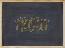 Trout meat written on a blackboard royalty free stock images