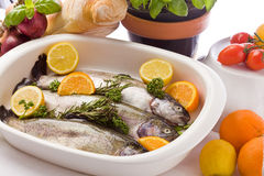 Trout with Orange and Lemon Stock Photo