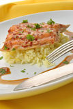 trout with organic rice on a plate Stock Images