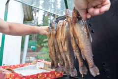 Trout in polish cuisine. Stock Photo
