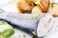 Trout with potato Stock Photography