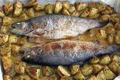 Trout with potatoes Stock Photo