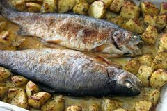 Trout with potatoes Royalty Free Stock Photo