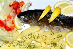 Trout with potatoes and vegetables Stock Photography