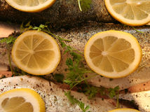 Trout ready for grilling. Fresh trout, with lemon and fresh chervil - ready to be grilled royalty free stock image