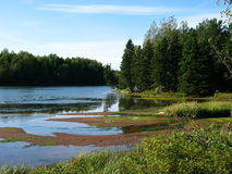 Trout River. A bend in the Trout River, Prince Edward Island royalty free stock photography
