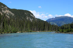 Trout River, British Columbia, Canada. Trout River in Muncho Lake Provincial Park, British Columbia, Canada Royalty Free Stock Images