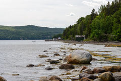 Trout River Pond Stock Images