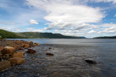 Trout River Pond Royalty Free Stock Photography