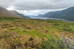 Trout River Pond and Tablelands Royalty Free Stock Images
