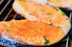 Trout steak fried on grill. Stock Images