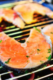Trout steak fried on grill. Stock Image