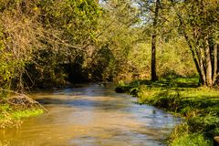 Trout Stream. The trout stream near the fish hatchery in Decorah Iowa Stock Photo