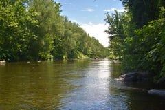 Trout Stream in the Poconos. Trout Stream in the Pocono Mountains, Pennsylvania royalty free stock photos