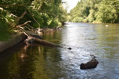 Trout Stream in the Poconos. Trout Stream in the Pocono Mountains, Pennsylvania stock photo