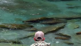 A trout takes the bait. Fishing stock footage