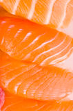 Trout texture Royalty Free Stock Photo