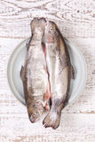 Trout. Two trouts in the plate on white table Royalty Free Stock Photo