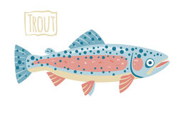 Trout, vector cartoon illustration Royalty Free Stock Photo