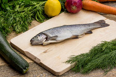 Trout with vegetables Royalty Free Stock Photos