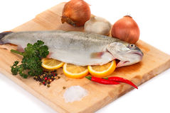 Trout on wooden board Stock Image