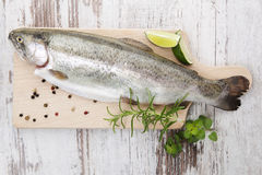 Trout on wooden kitchen board. Royalty Free Stock Photo