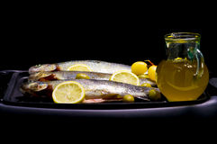 Trouts Royalty Free Stock Image