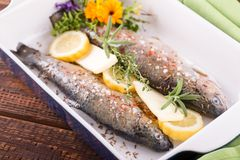 Trouts in blue ceramic pan with butter and lemon Stock Images