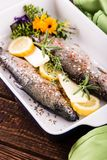 Trouts and herbs with butter and lemon in pan Stock Images
