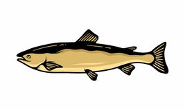 Fish sea logo icon unique. Trouts and other fishes are a recurring topic in several biology projects or fishing publications, this vector set can be useful for Royalty Free Stock Photography