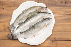 Trouts on a white plate Stock Photography